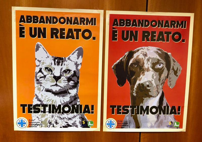 CAV IN CAMPO CONTRO L'ABBANDONO DI ANIMALI