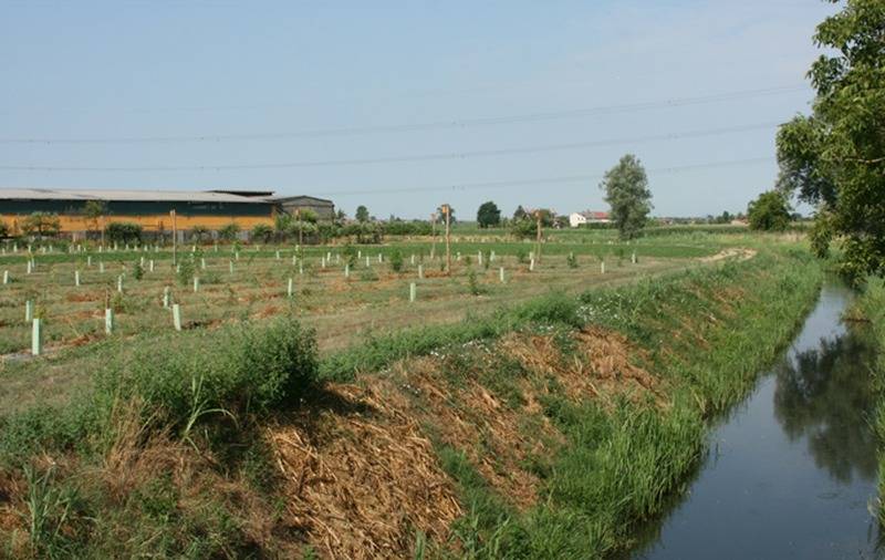 consorzio-di-bonifica-progetto-per-la-biodiversit