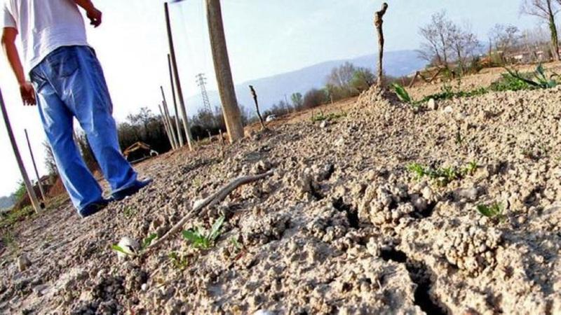 IL CALDO METTE IN GINOCCHIO L'AGRICOLTURA
