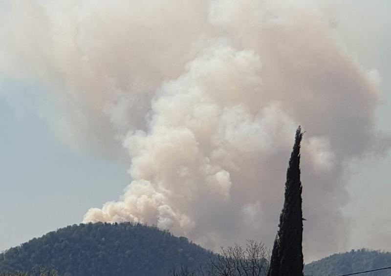 incendio-boschivo-a-luvigliano-paura-per-le-case