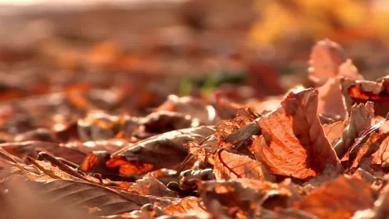 Primo giorno d'autunno, l'estate è finita