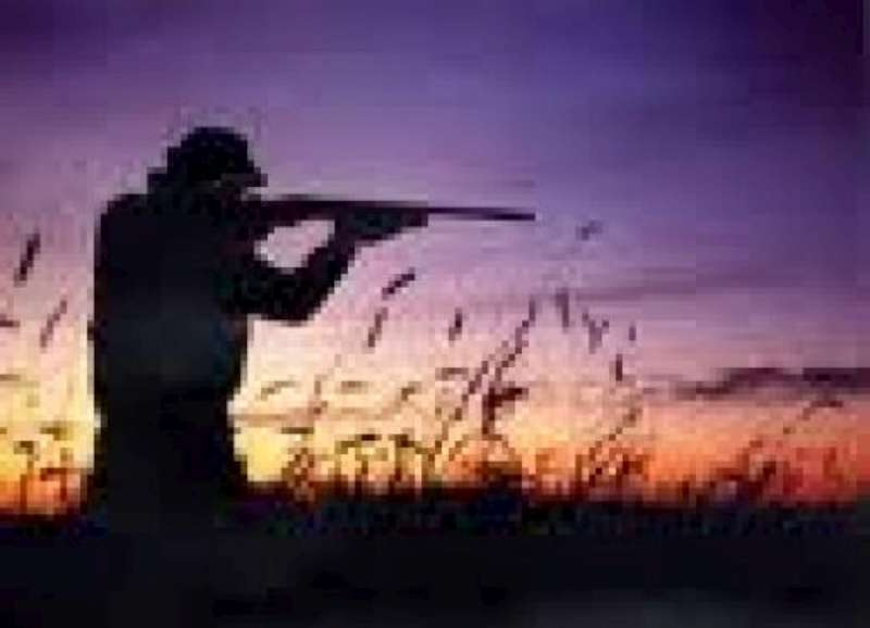 CACCIA: BLITZ ANIMALISTI CONTRO BERLATO E GENTILINI