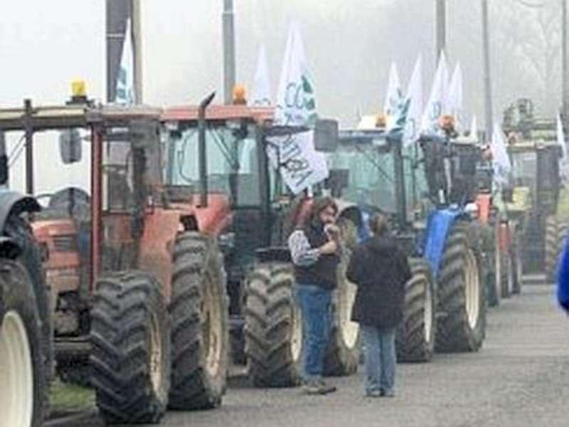 QUOTE LATTE: PROTESTA COSPA A PORDENONE CONTRO MULTA