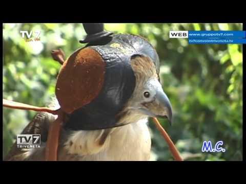 TV7 CON VOI DEL 21/01/2016 – ANDIAMO IN SUDAN
