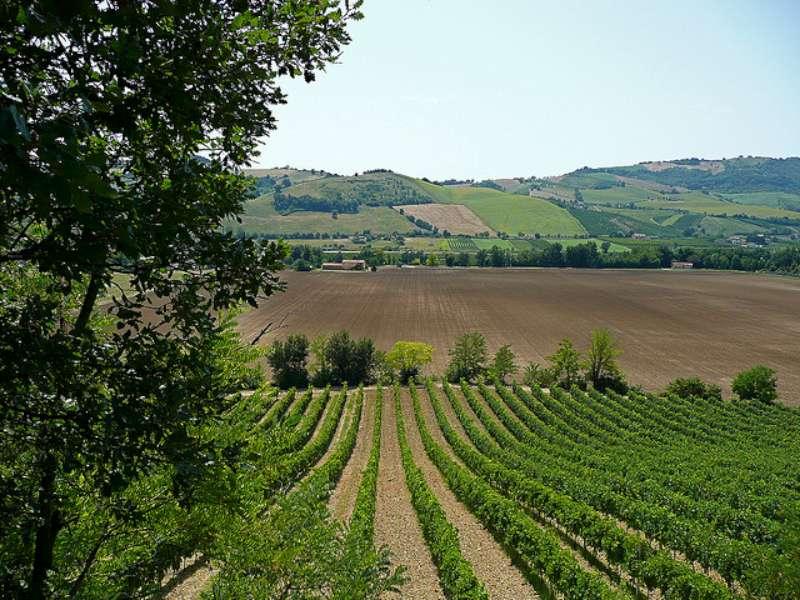 UE: ROMANO, IN AGRICOLTURA FINORA HA COMANDATO FRANCIA