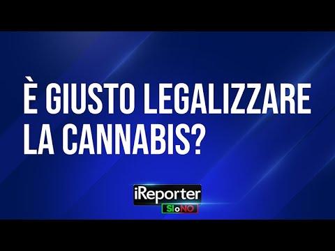 e-giusto-legalizzare-la-cannabis