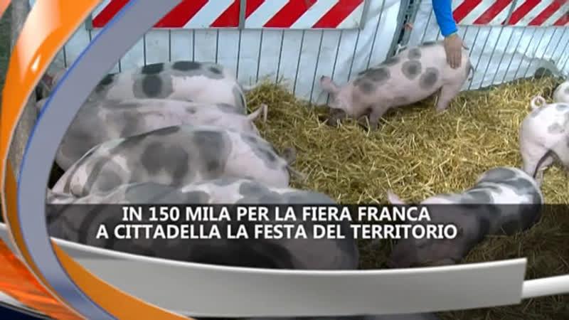 in-150-mila-per-la-fiera-franca-ireporter-25-10-21